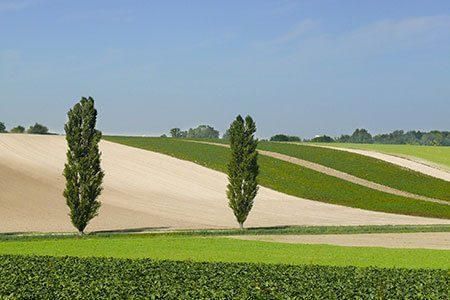 Landschaft, Foto: horticia/Fotolia.de