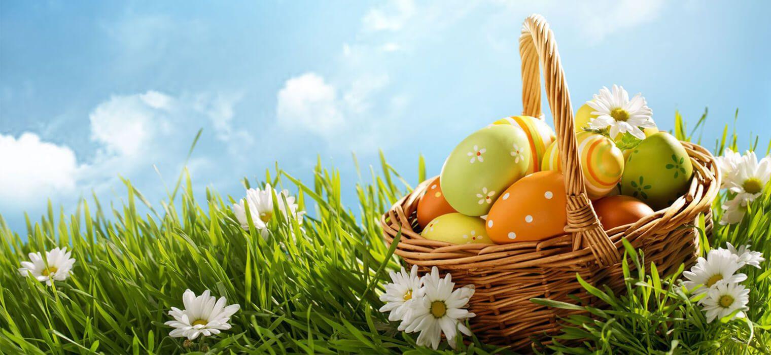 Osterkorb auf Blumenwiese