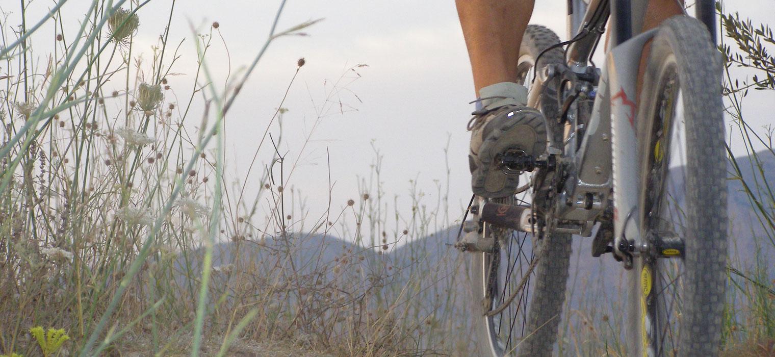 Mountainbike, Bild: Moselhotel Burg-Café Alken